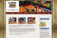 capayorganic - Copy